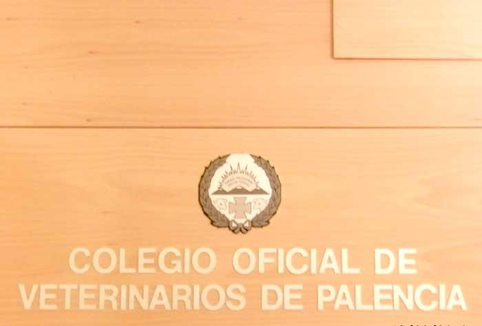 Entrada Colegio Oficial de Veterinarios de Palencia