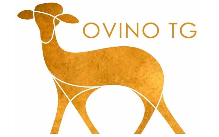 Visita Ovino TG