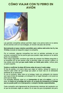 Guía - Como viajar con tu perro