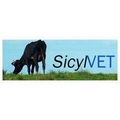 SICYNET
